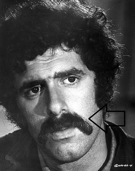 529full-elliott-gould